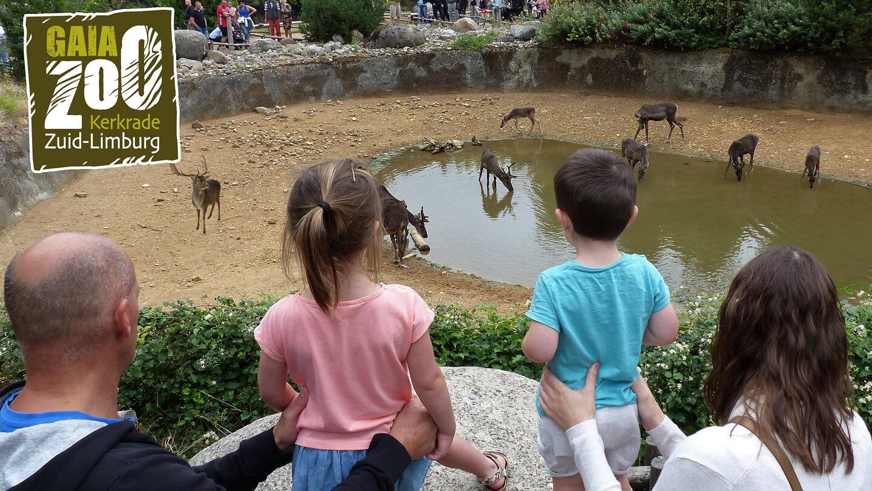 Dierenparken Nederland