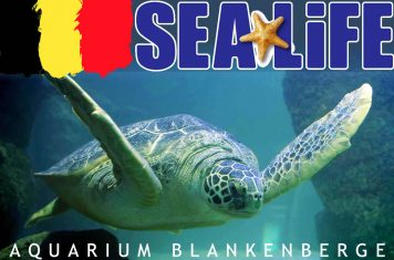 Recensie Sea Life Blankenberge