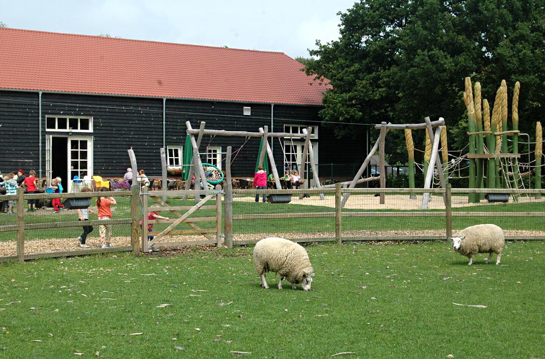 Speelboerderij Noord-Brabant