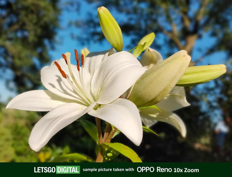 Oppo Reno test